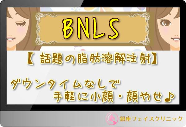 BNLSバナー