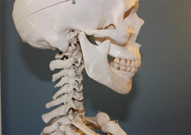 顎削りの整形手術をお考えの方へ