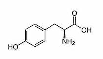 チロシン(アミノ酸)